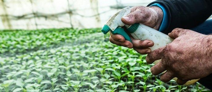 Természetes peszticid